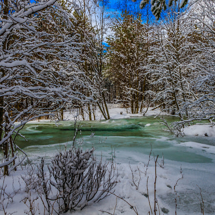 Stream in winter forrest, Canon EOS 7D MARK II, Canon EF-S 17-55mm f/2.8 IS USM