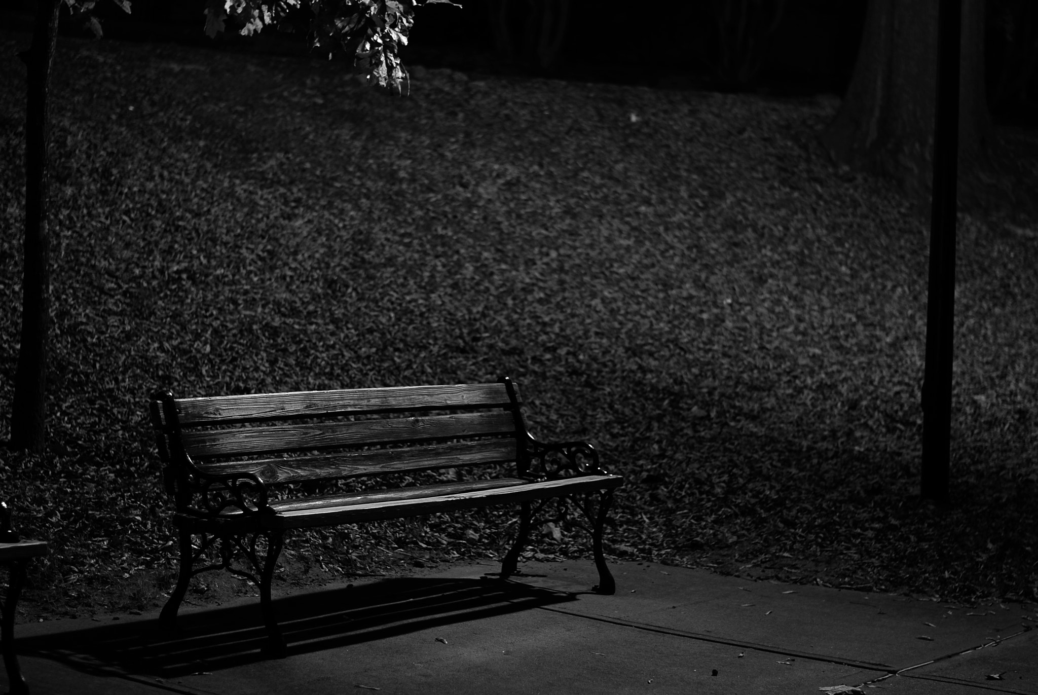 Photograph bench by Kyle Pulikowski on 500px