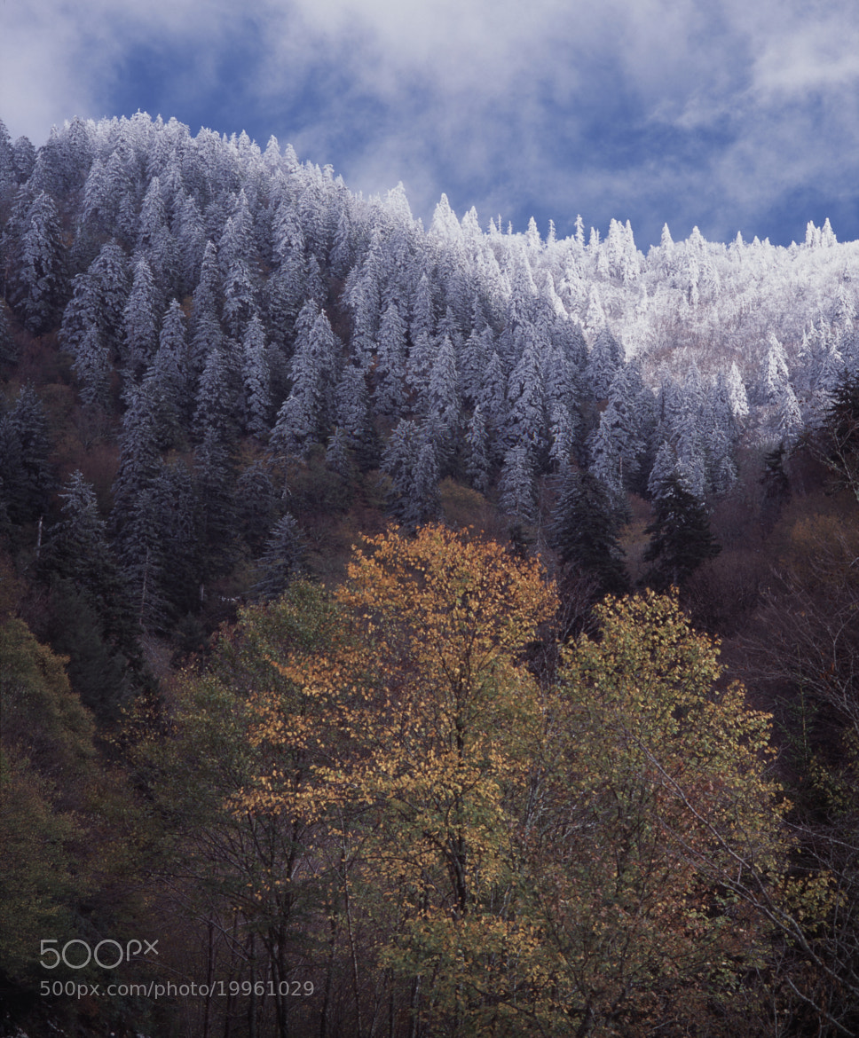Photograph Wintery Encroachment by Ben Prothro on 500px