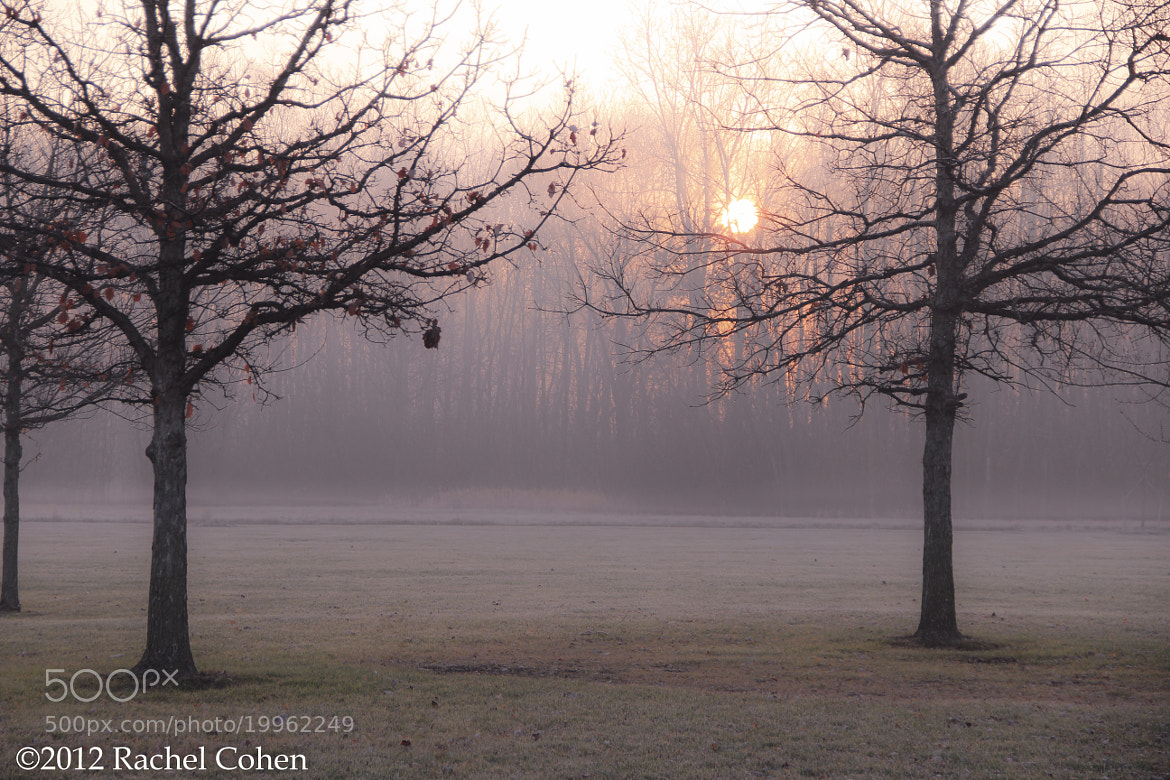 "Photograph ""Glowing Start"" by Rachel Cohen on 500px"