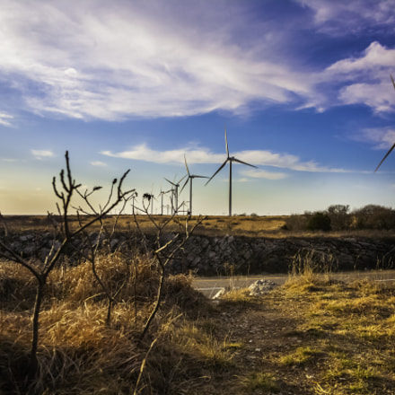 Wind Power, Canon EOS-1DS MARK II, Canon EF 28-135mm f/3.5-5.6 IS