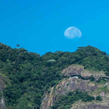 Forest moonset Pedra da Gavea