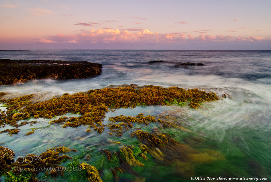 Photograph Long reef by Alexander Novickov on 500px