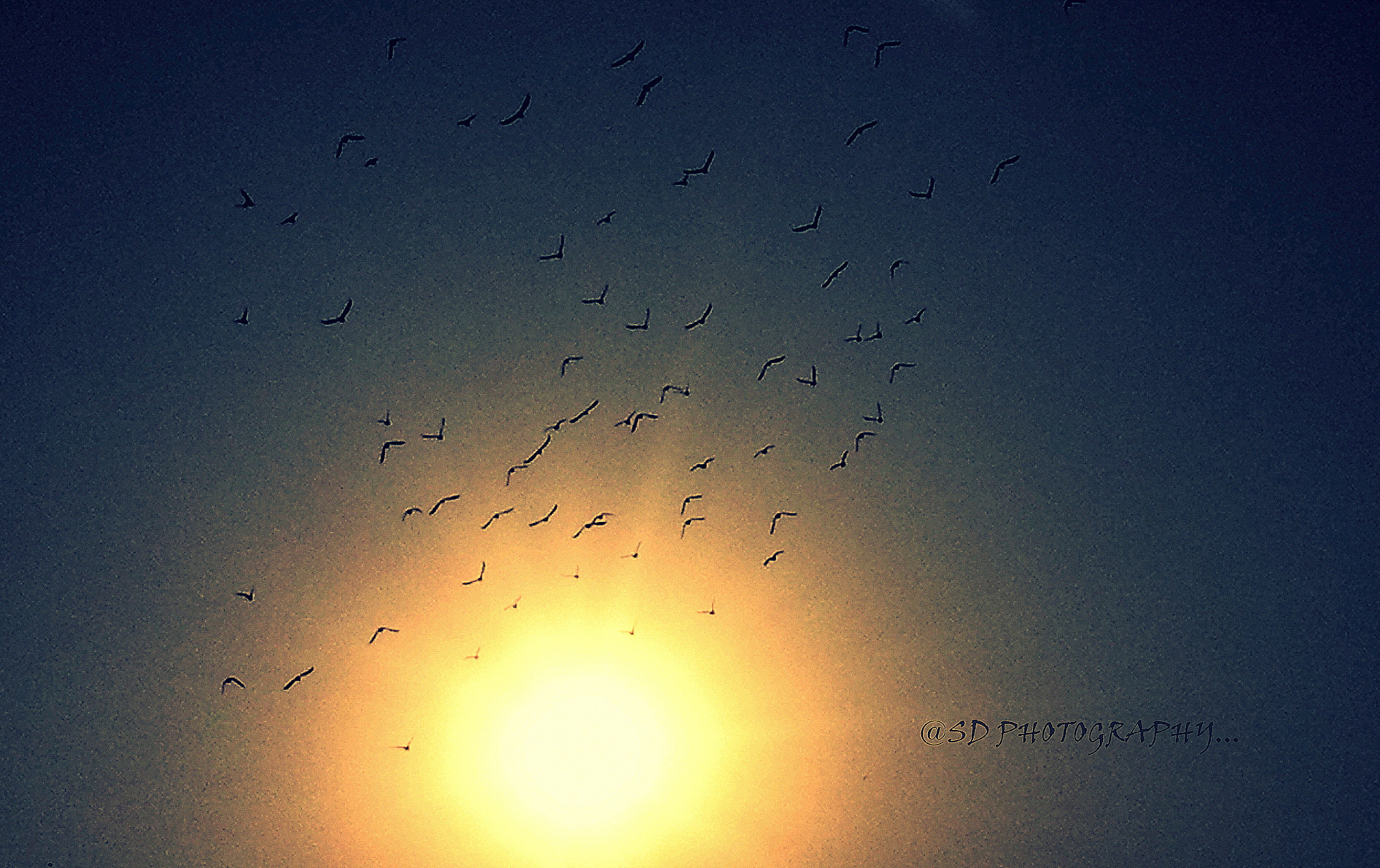 Photograph going home :) (mobile capture & sharpen mode ) by SUBHA   on 500px