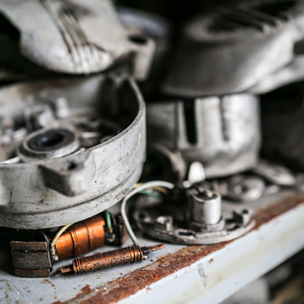 a coil maybe, smal, Canon EOS 6D, Sigma 24-35mm f/2 DG HSM | A