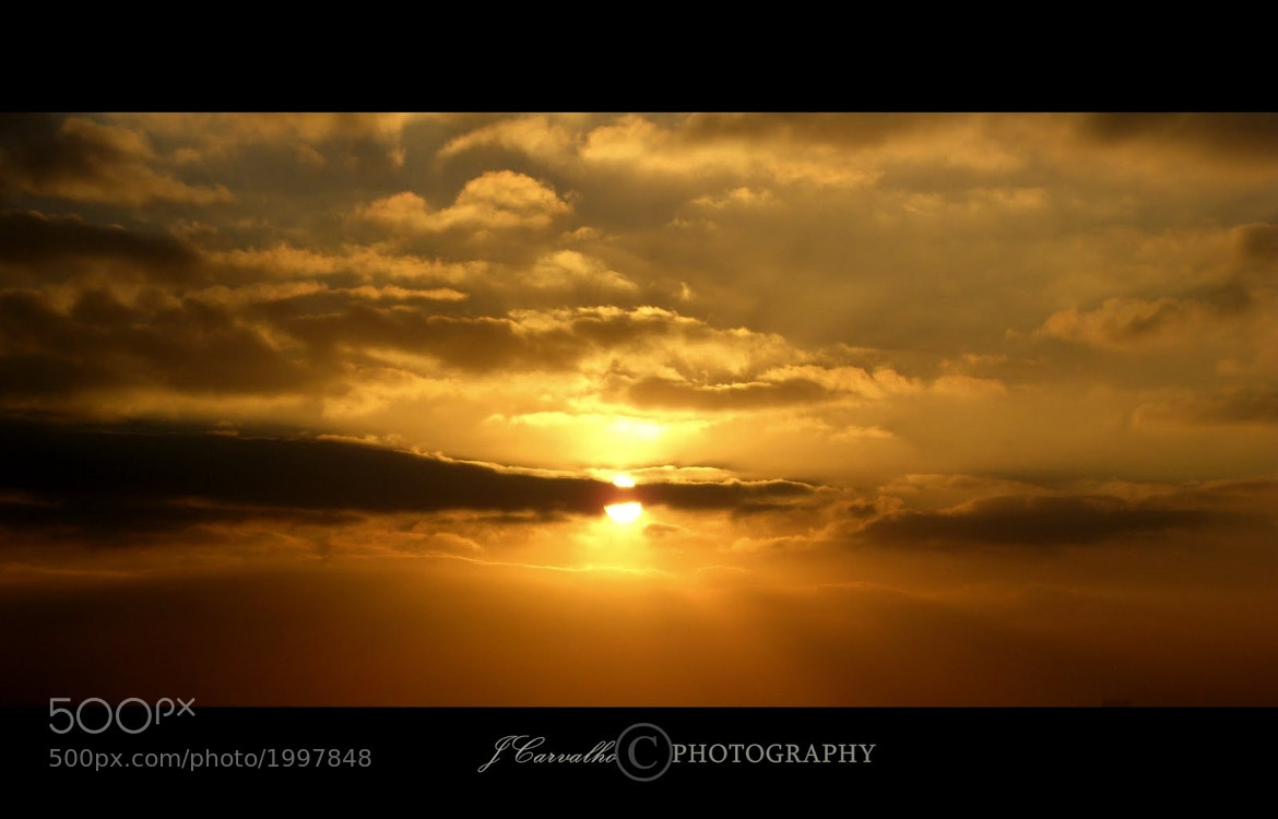 Photograph Golden Sunset by Joel Carvalho on 500px