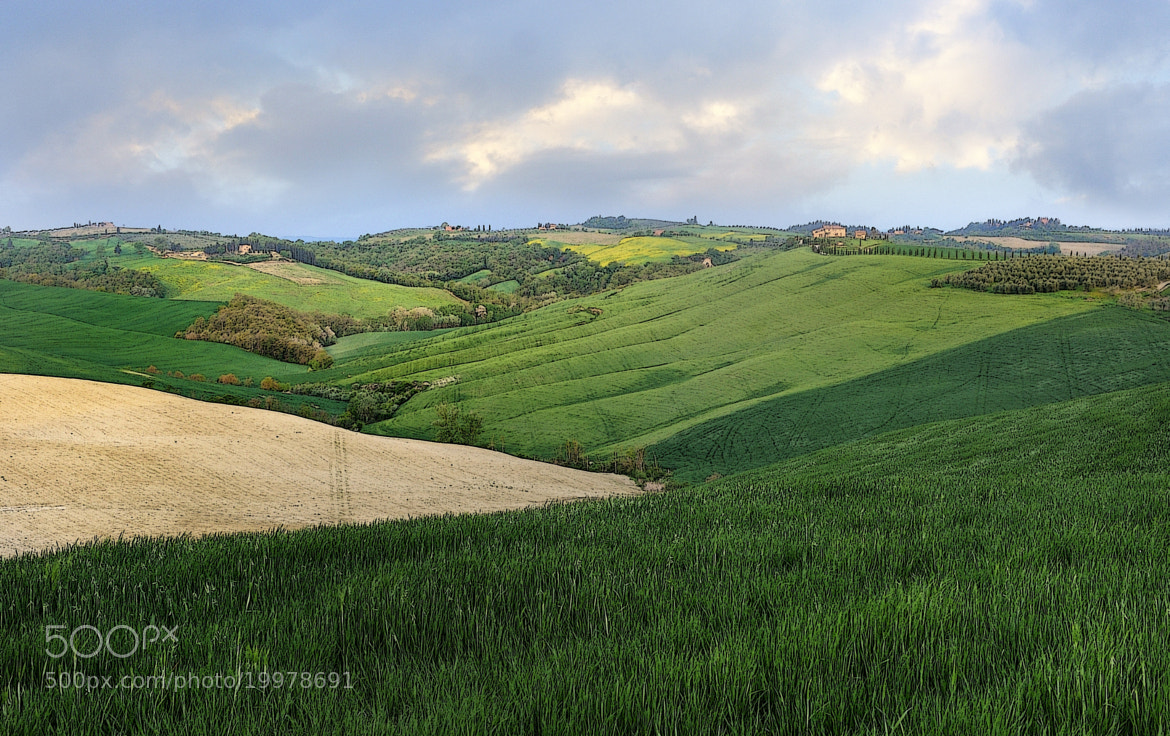 Photograph GREEN by mauro maione on 500px