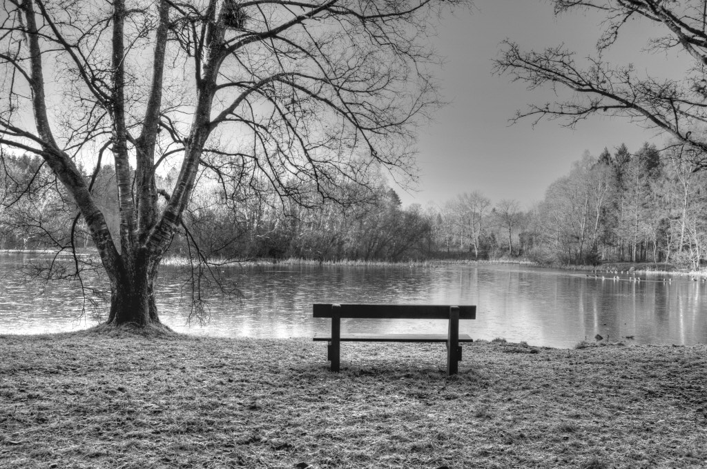 Photograph Bench by Joe Butler on 500px