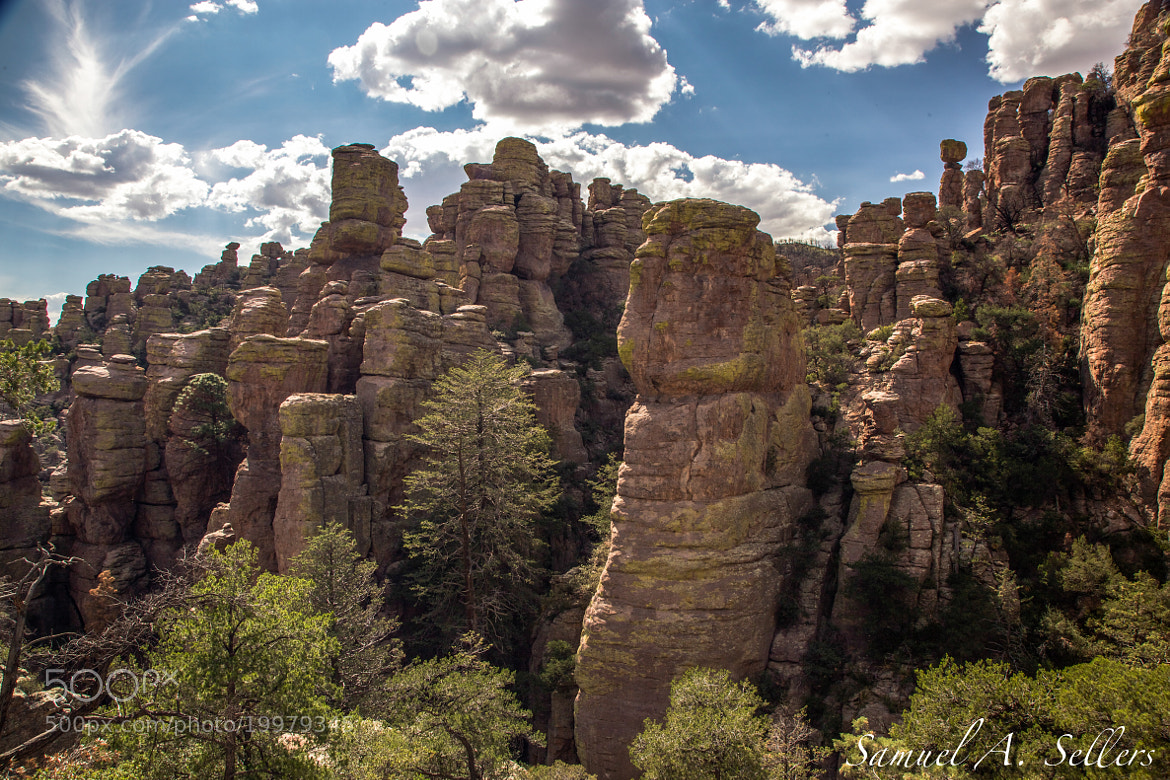 Photograph Chiricahua Rock Formations 8 by Sam Sellers on 500px