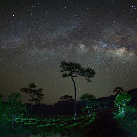 Milky Way at Phu, Canon EOS 5D MARK II, Canon EF 15mm f/2.8 Fisheye