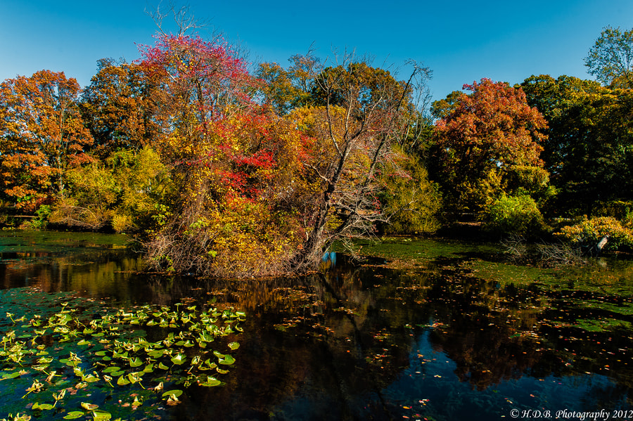 Photograph Early Fall colors by Harold Begun on 500px