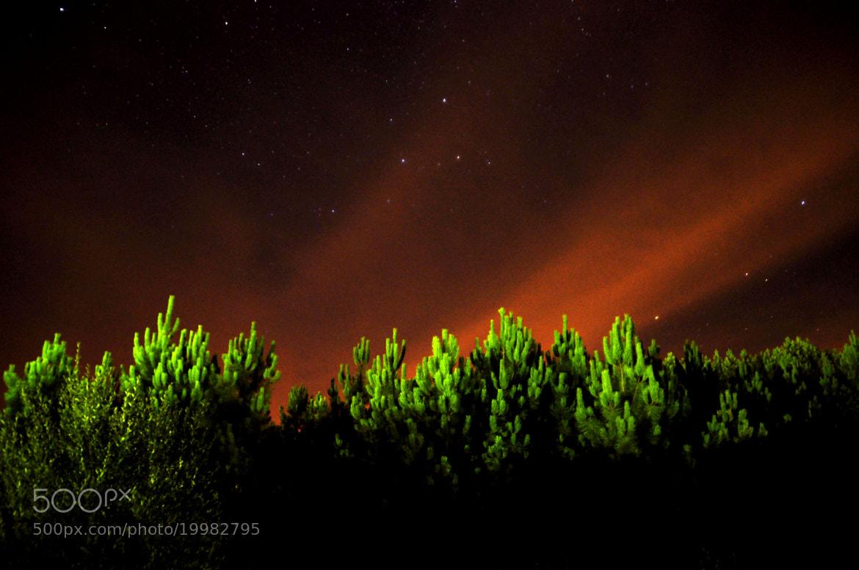 Photograph The storm Fog by Nicolas  Ortegón on 500px
