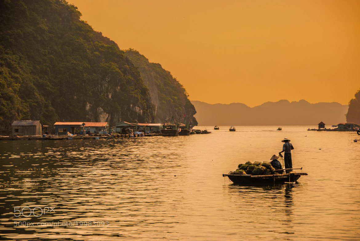 Photograph Halong Bay II by César Asensio Marco on 500px