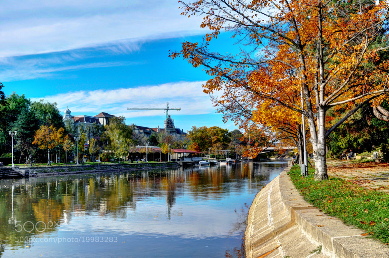 Photograph Enjoy Autumn  by Luis Salha on 500px