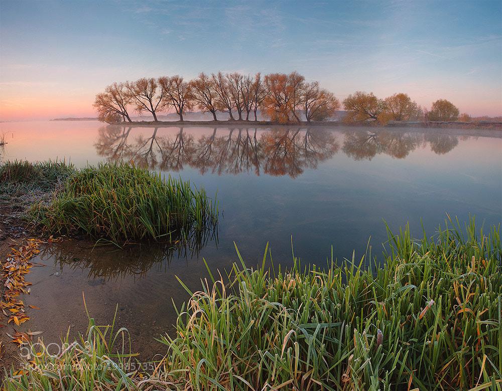 Photograph autumn willow by Marat Akhmetvaleev on 500px