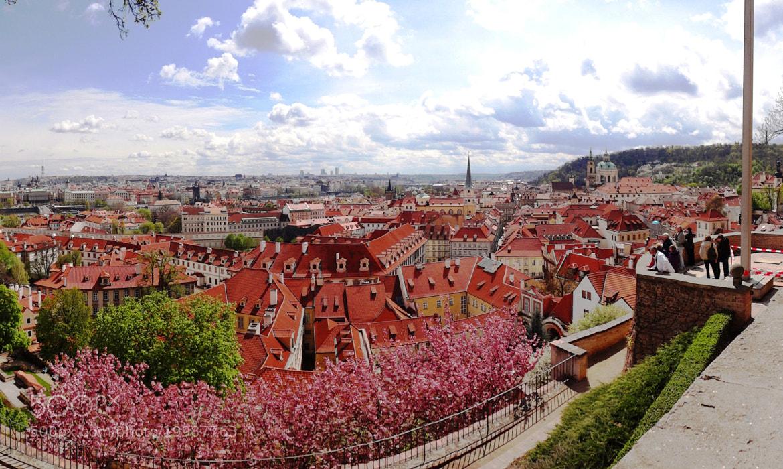 Photograph Prague, Spring by Anton Konyukhov on 500px
