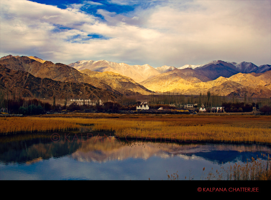 Photograph FADING INTO TWILIGHT by KALPANA  CHATTERJEE on 500px