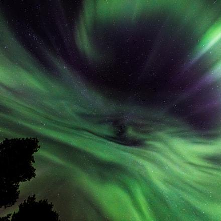 The eye of the aurora