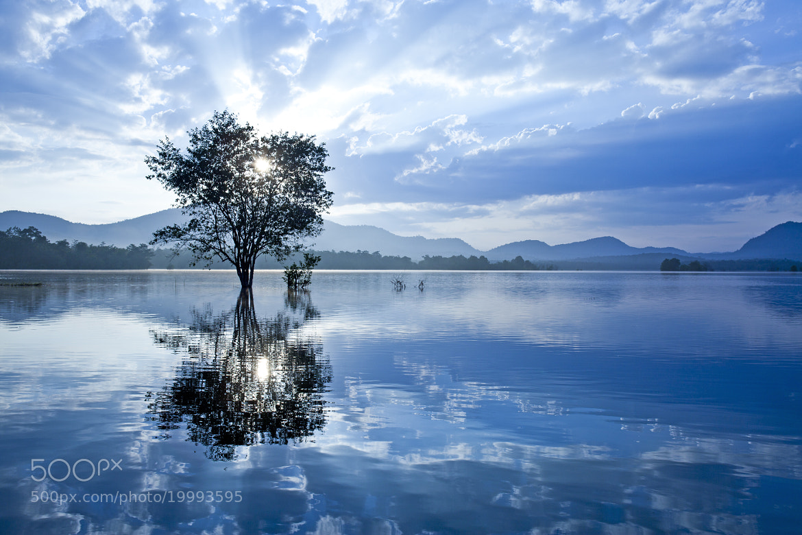 Photograph restful time by DEW SP on 500px