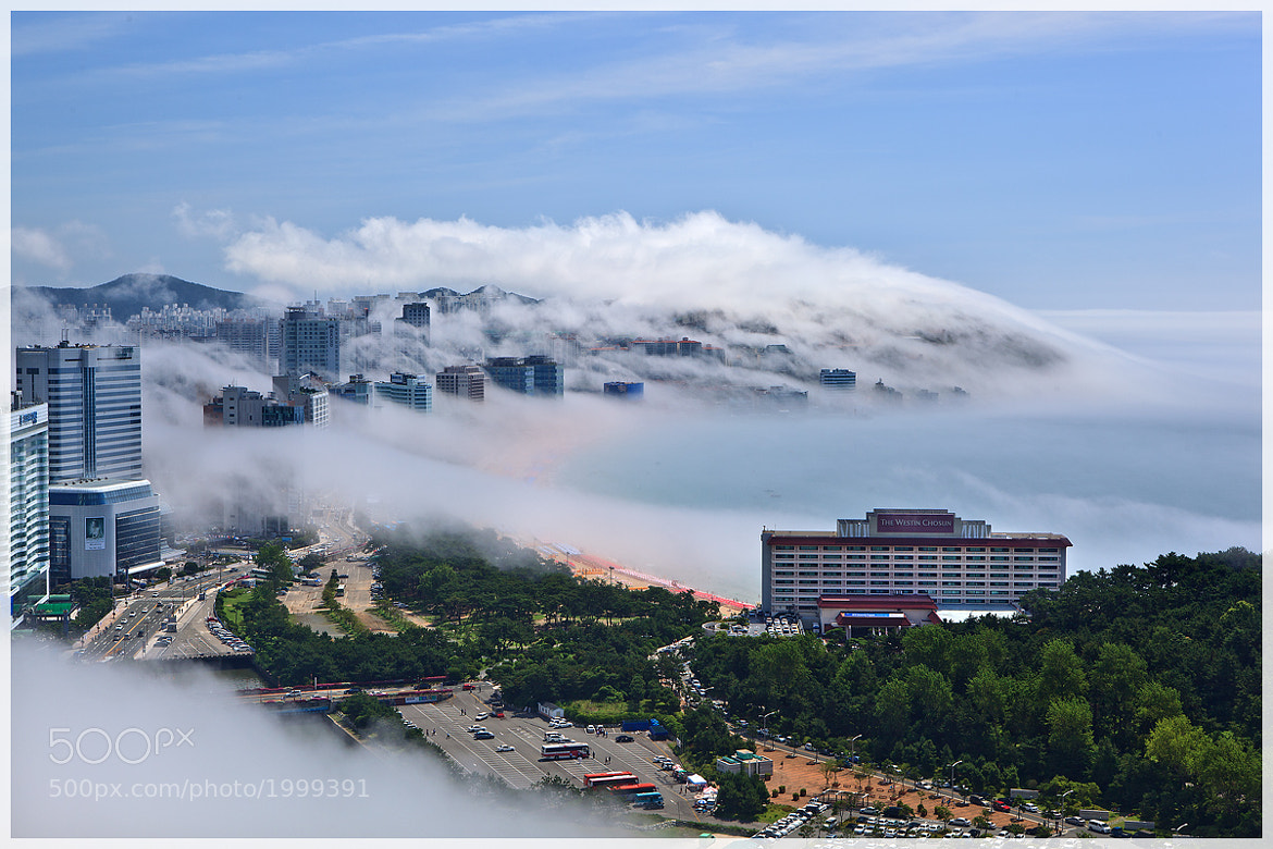 Photograph SEA FOG by Shin YongSang on 500px