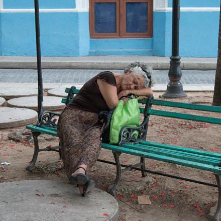 resting...  - Cuba Camaguey
