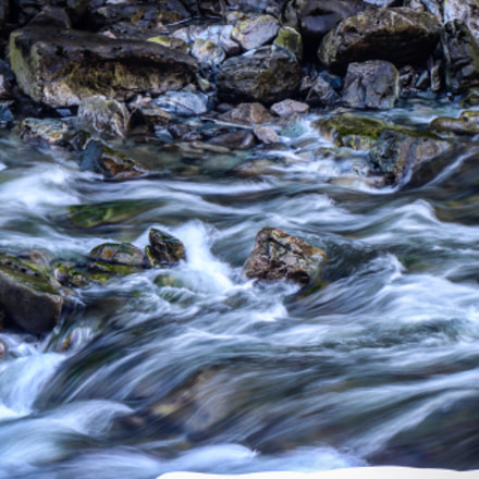 Capilano River Hatchery, Canon EOS 80D, EF-S18-135mm f/3.5-5.6 IS USM