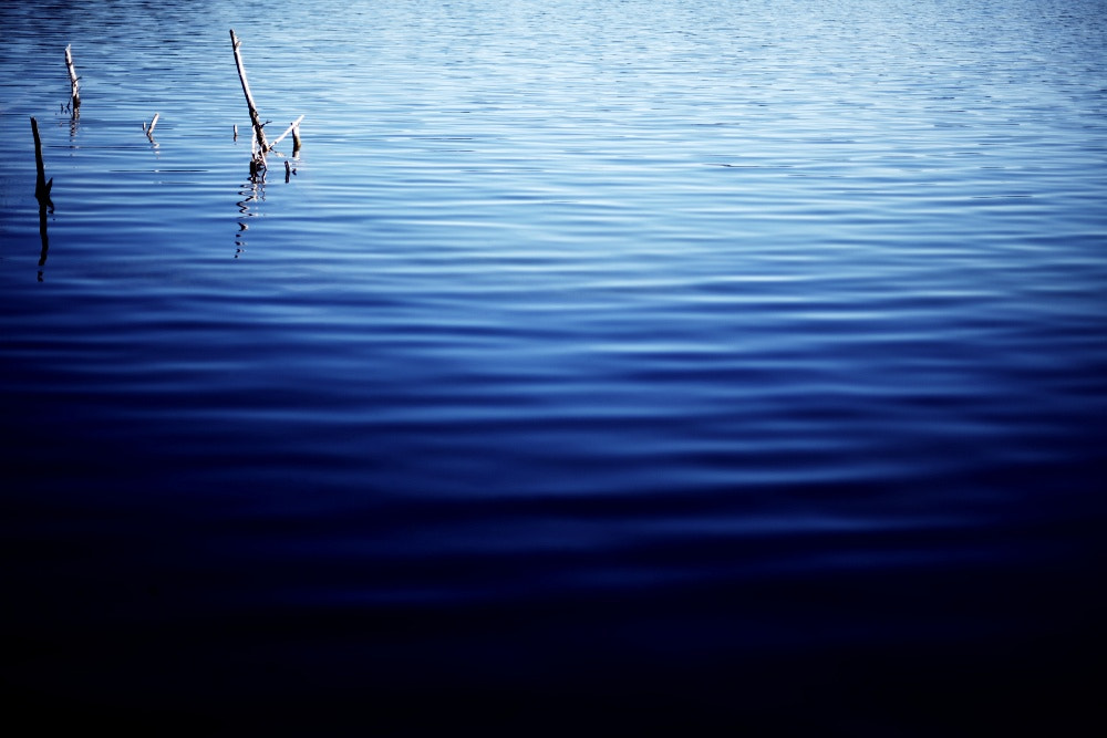 Photograph into the blue by Aileen Wessely on 500px