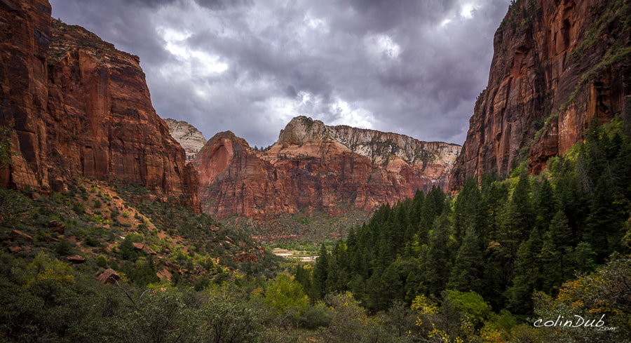 Photograph Zion in Fall by Colin Wojno on 500px