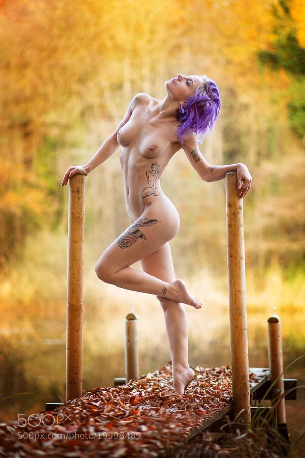 Photograph Autumn Fairytale by Bruno Birkhofer on 500px