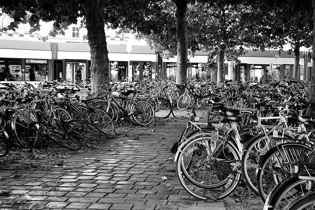 Photograph Bikes by Orkidea White on 500px