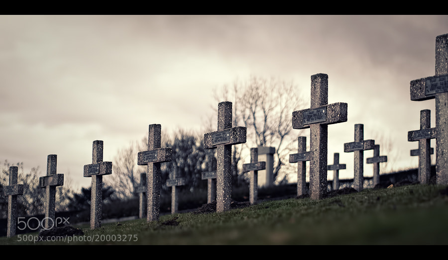 Photograph Fallen and buried by Stéphane ABCDEF on 500px