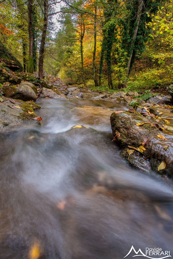 Photograph Fall Flow by Davide Ferrari on 500px