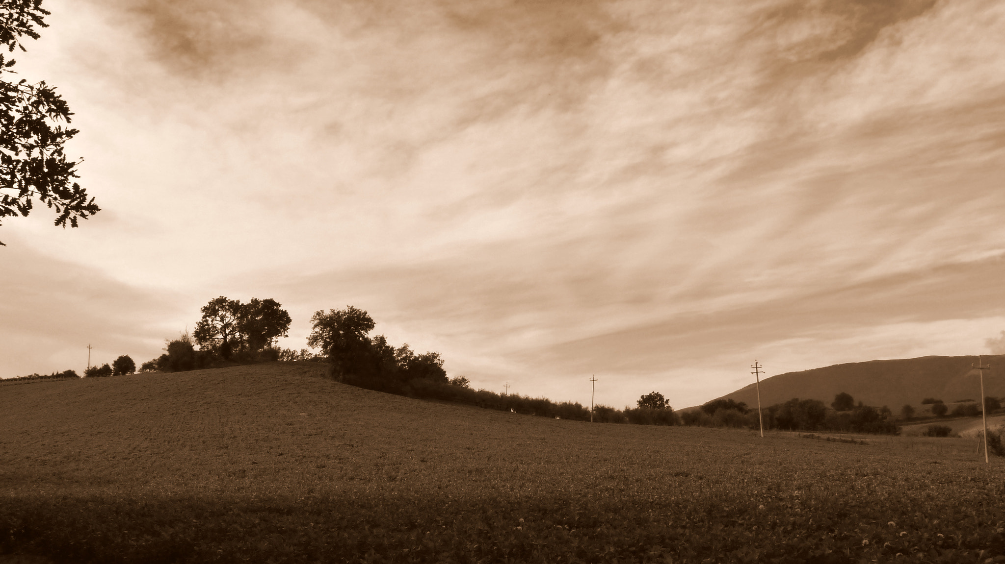Photograph Landscape in Sepia by Ulderico Pontini on 500px