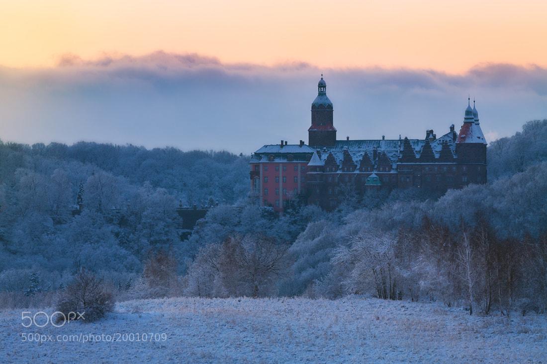 Photograph The Haunted Palace by Izabela & Dariusz Mitręga on 500px