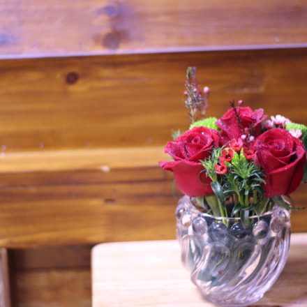 Not only flowers, Canon EOS 700D, Canon EF 50mm f/1.8 STM