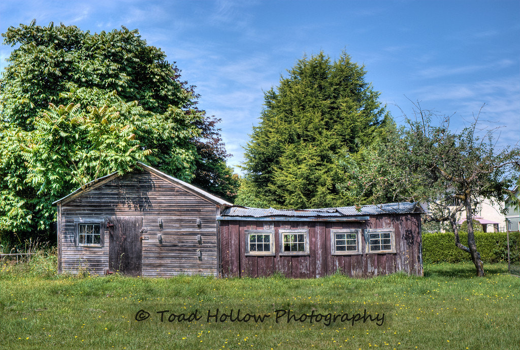 Photograph The Crooked Shed by Toad Hollow Photography on 500px