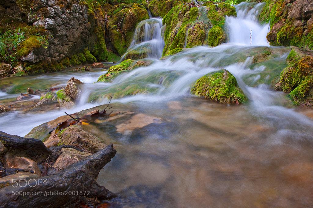 Photograph Waterland by Jure Kravanja on 500px