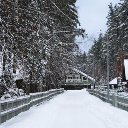 Snowday in the countryside, Canon EOS 1000D, Sigma 18-200mm f/3.5-6.3 DC OS HSM [II]