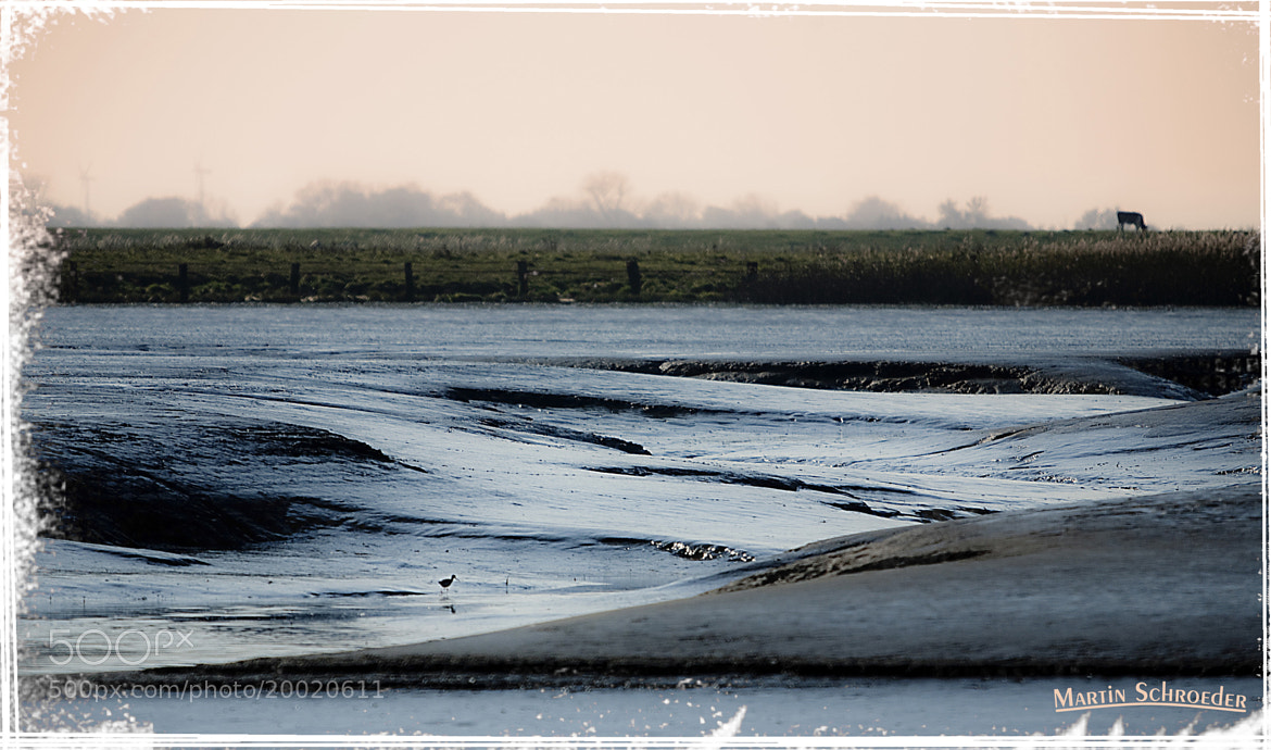 Photograph Estuary of Oste / Germany by Martin Schroeder on 500px