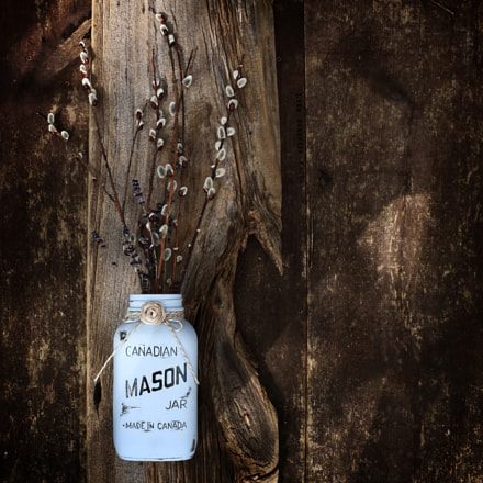 Canadian Mason Jar, Canon EOS 70D, Canon EF-S 18-135mm f/3.5-5.6 IS STM