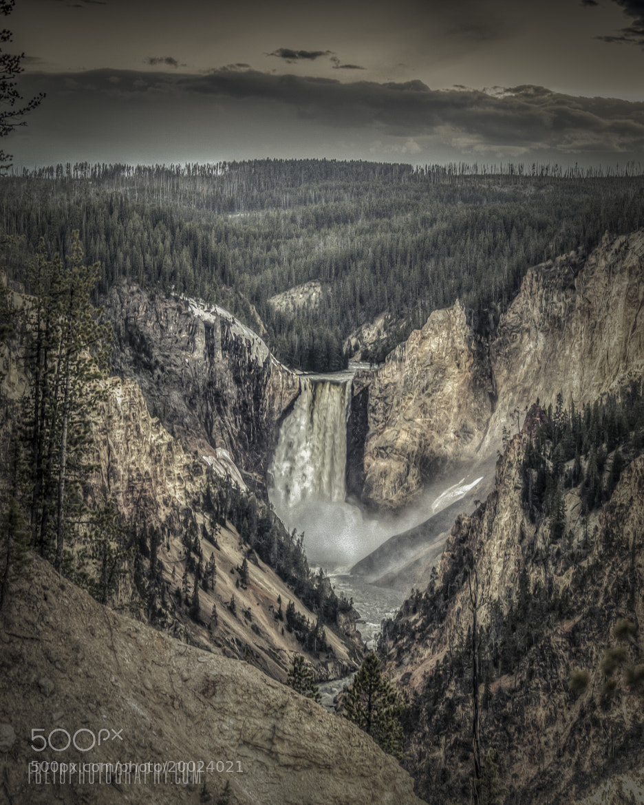 Photograph Yellowstone  by Fernando De Oliveira on 500px