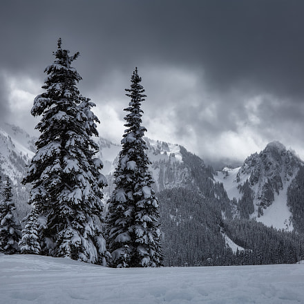 Gloomy Weather at Paradise, Canon EOS 6D, Canon EF 24-105mm f/4L IS USM