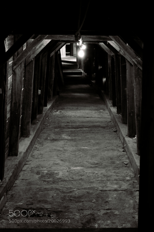 Photograph Mine Tunnel by Orlando Gutierrez on 500px