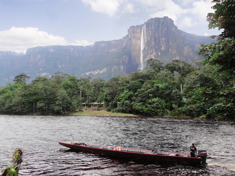 Photograph Vista al Salto Angel - Parque Canaima by Enrique Tirado on 500px