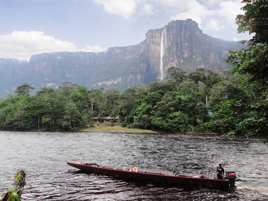 Photograph Vista al Salto Angel - Parque Canaima by Enrique Tirado on 500px
