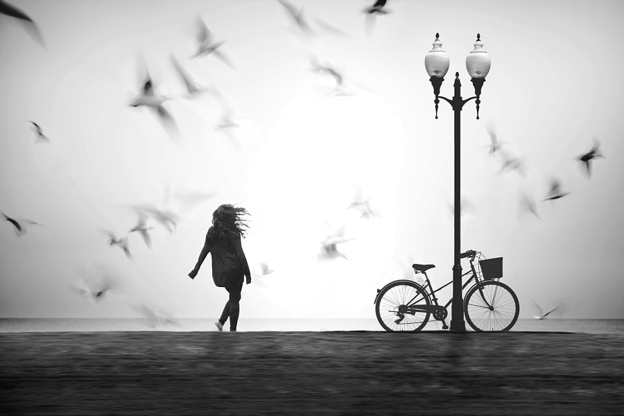 Gone With the Wind by nikos Bantouvakis on 500px.com