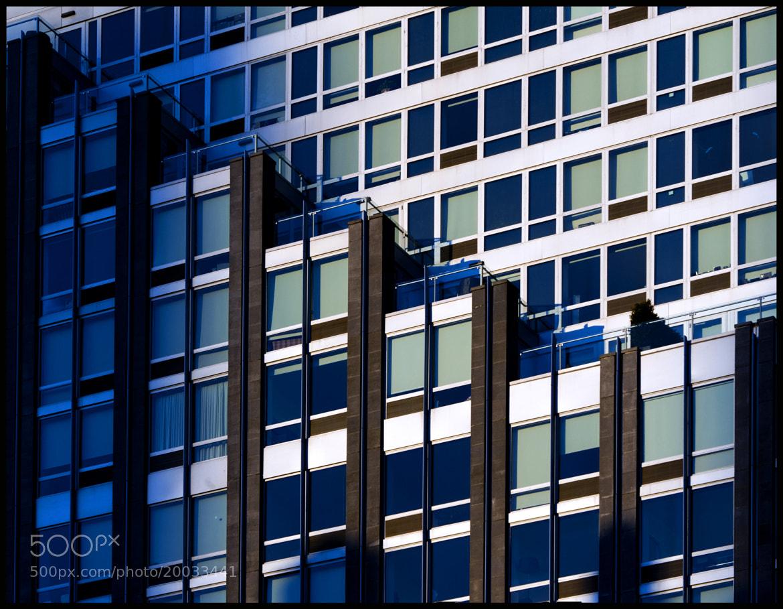 Photograph kinda blue by David Ottavio on 500px
