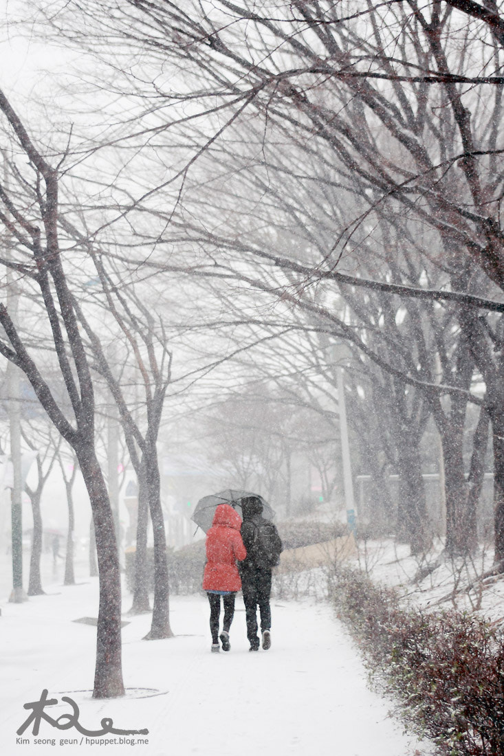 Photograph The date of in the snow by kim seong-geun on 500px