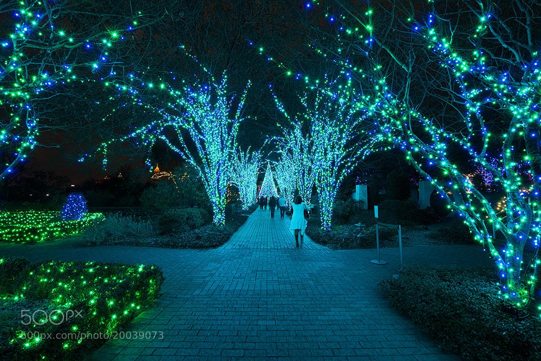 Photograph Atlanta Botanical Garden by David Kosmos Smith on 500px