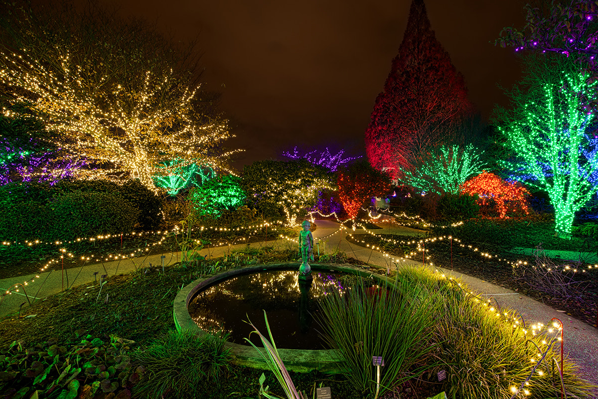 Photograph Garden Lights, Holiday Nights by David Kosmos Smith on 500px